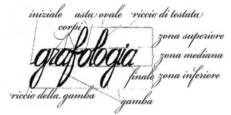 Il portale TuttoGrafologia: per chi ama la grafologia